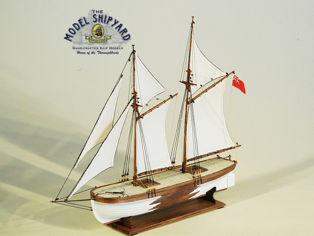 Speedwell Model Ship